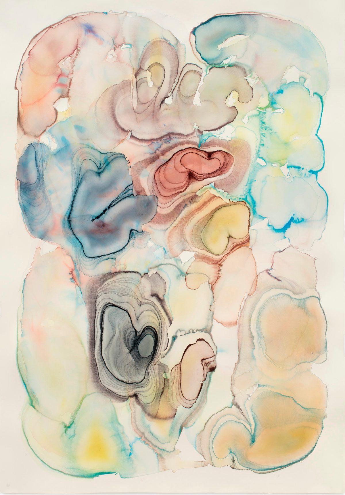 The New Art Gallery Walsall presents Barbara Nicholls