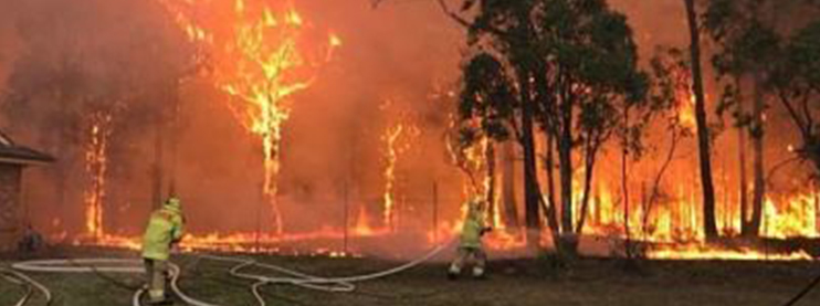 NSW Bushfires Downgraded but Still Out of Control