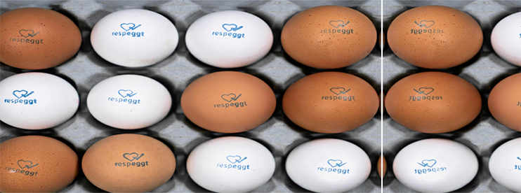 Berlin: World's First no-Kill Eggs go on Sale