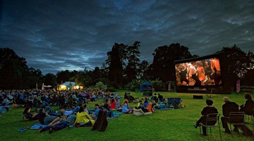 Summer Nights Film Festival